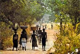 Afrique-BURKINA FASO - Entre BANFORA Et SINDOU Retour Du Marché *PRIX FIXE - Burkina Faso
