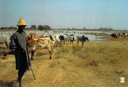 Afrique-BURKINA FASO -LENTAOGO Province Gourma Scène Familière Berger Troupeau Point D'eau*PRIX FIXE - Burkina Faso