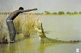 Afrique-BURKINA FASO SABOU Offrande à Un Crocodile Sacré *PRIX FIXE - Burkina Faso