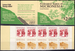 MICRONESIE MICRONESIA C57b ** MNH Carnet Plié Booklet Heftchen Local Scenes - Micronésie