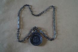 Huissier De La Cour Des Comptes,médaille Avec Chaine ,originale,RARE Pour Collection,diam. 70 Mm. - Organizations