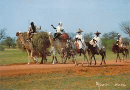 Afrique > NIGER  Sur La Route De FILINGUE Jour De Marché  MAURICE ASCANI 29 *PRIX FIXE - Niger