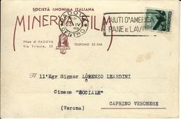 PADOVA - MINERVA FILM - SOCIETA' ANONIMA ITALIANA - Padova (Padua)