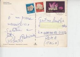 KENIA  1977 - Yvert 95-06-102 - Minerali - Kenia (1963-...)