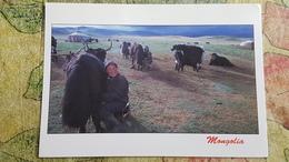 Mongolia, Yak . Nice Stamp - Old Postcard - Mongolia
