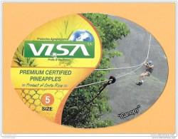 FRUIT AND VEGETABLES (PINEAPPLE) - VISA (COSTA RICA) - CALIBRE 5 - 02 - Fruits & Vegetables