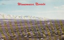 Nevada Winnemucca Panoramic View