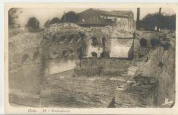 OSTIA COLOMBARIO (106) - Altre Città
