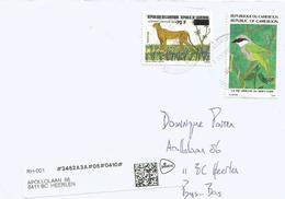 Cameroun Cameroon 2018 Garoua Bird Malacotonus Kupeensis Leopard Panthera Pardus Cat Cover - Zangvogels