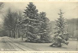 L'hiver à Libramonr - Libramont-Chevigny