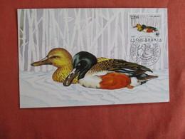 Maximum Card-- Birds  Beograd    Ref 3033 - Birds