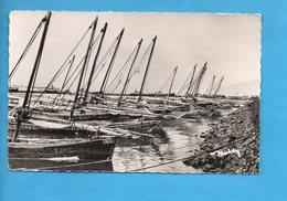DJI 03 - Djibouti - Le Visage Du Pays Somal - Le Port - Les Boutres De Tadjoura - Djibouti