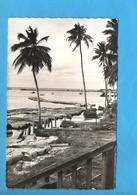 GAB 07 - Gabon - Port Gentil - Trains De Bois - Flottage - Gabon