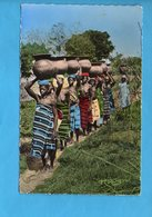 GAB 08 - Gabon - L'Afrique En Couleurs - Porteuses D'eau - Gabon
