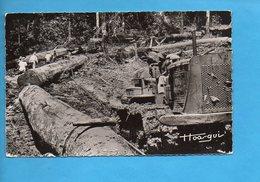 GAB 13 - Gabon - Exploitation Forestière - Bûcheron Bulldozer Déforestation - Gabon
