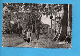 GAB 18 - A.E.F. - Gabon - Piste De La Brousse - Gabon