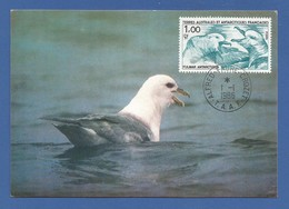 Frankreich / Kolonien / TAAF 1986  Mi.Nr. 208 , Antarktischer Eissturmvogel - Maximum Card - 1. Jan. 1986 - Tierras Australes Y Antárticas Francesas (TAAF)