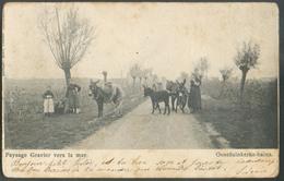 PAYSAGE GRAVIER Vers  La Mer OOSTDUINKERKE-BAINS Vue Animée Avec Des ânes (ezel) Exp. Le 21 Avril 1905 Vers Aiseau - 130 - Oostduinkerke