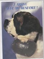 CARTE DE VOEUX - J'ARRIVE AVEC DU RENFORT ! - Non Ecrite - Unclassified