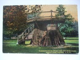 USA - Tacoma, WA. - Mammoth Cedar Stump Used For Band Stand In Wright Park - 1917 - Tacoma