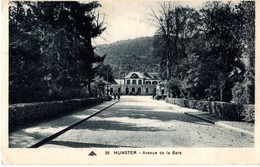 MUNSTER - AVENUE DE LA GARE - Munster