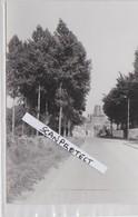 CHASSART-L'USINE-ANCIENNE SUCRERIE ET DISTILLERIE-DUMONT DE CHASSART-PHOTO-DATEE-8.1981-VOYEZ LES 2 SCANS - Fleurus