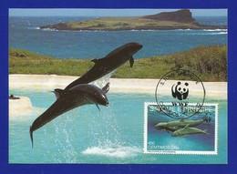 SäoTome E Principe  1992 , False Killer Whale - WWF Maximum Card - First Day 7-1.1992 - Sao Tome And Principe