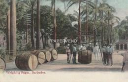 Barbados  Weighing Sugar  Bs148 - Barbados