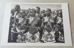 Femme Seins Nus - Tchad - Jeunes Filles Moudang De Lere - Tchad