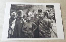 Femme Seins Nus - Tchad - Bororos Pasteurs Nomedes De Race Foulbé - Tchad
