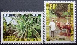 CAMEROUN                N° 658/659             NEUF** - Cameroun (1960-...)