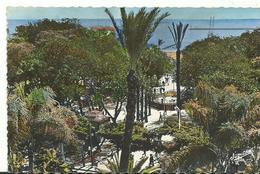 Algerie El Dejezair  Le Square Bresson Au Fond Le Port - Algeria