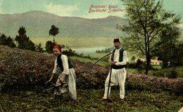 BOSNISCHE SCHNITTER -- BOSANSKI KOSC   BOSNIA Y HERZEGOVINA BOSNIEN UND  HERZEGOWINA - Bosnia And Herzegovina