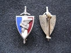 Insigne Gouvernement De Vichy - Badges & Ribbons