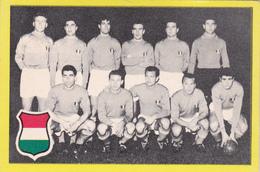 Football Italie - Trading Cards