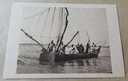 Tchad - Barque De Peche Sur Le Chari - Tchad