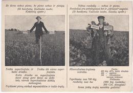 Lithuania Lietuva Kedainiai Siauliai, Agriculture Farming - Lithuania