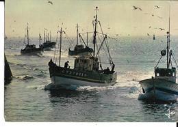 Bretagne Gros Plan Bateau De Pêche - Barche