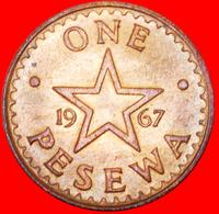 # STAR: GHANA ★ 1 PESEWA 1967 UNC MINT LUSTER!  LOW START ★ NO RESERVE! - Ghana