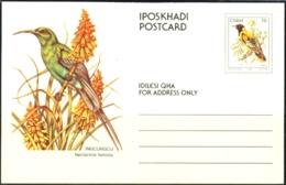 BIRDS- MALACHITE SUN BIRD -PRE PAID PICTURE POST CARD-CISKEI- MC-52 - Hummingbirds