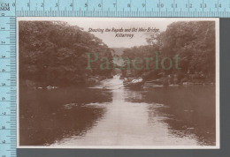 Killarney - Shooting The Rapids And Old Weird Bridge, Real Photo - ED: The Milton Series - Kerry