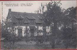 Heuvel Calmpthout Kalmthout Cooate Des Roses Pension De La Famille Ch. Van Gansen ZELDZAAM (In Zeer Goede Staat) - Kalmthout