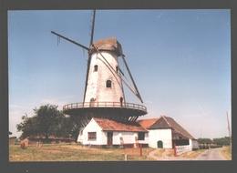 Kanegem - Mevrouwmolen - Molen / Mill / Moulin - Nieuwstaat - Tielt