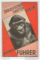 Zoologischer Garten Berlin - Kleiner Führer 1930 - Von Prof. Dr. L. Heck - 52 Seiten Mit Unzähligen Abbildungen - Berlin