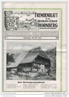 Hornberg - Fremdenblatt - Schwarzwaldbahn - Samstag 20. Juli 1929 - 25cm X32cm - 8 Seiten Mit 7 Abbildungen - Bade-Wurtemberg