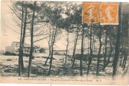 ***  33  ***  LACANAU OCEAN  Vue Prise à Travers Les Pins - (PLI Moins Visible Qu'au Scan) - France