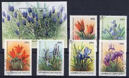 AZERBAIDJAN AZERBAYCAN 1993, FLEURS / FLOWERS,  6 Valeurs Et 1 Bloc, Oblitérés / Used. R243 - Azerbaïdjan