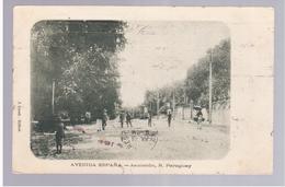 Paraguay Asuncion Avenida Espana Ca 1915 OLD POSTCARD 2 Scans - Paraguay