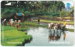 INDONESIA A-155 Optical Telkom - Landscape, Rice Field, Animal, Water Buffalo - Used - Indonesia