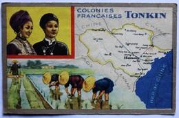 CPA Tonkin Vietnam Colonies Françaises Produits Du Lion Noir Bon Point écolier Piquage Du Riz - Viêt-Nam